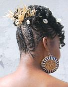 iaaf10-flat-twists-updo-back
